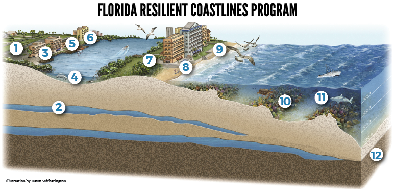 Resilient Coastlines Graphic