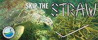 Skip the Straw Social Media thumbnail 3