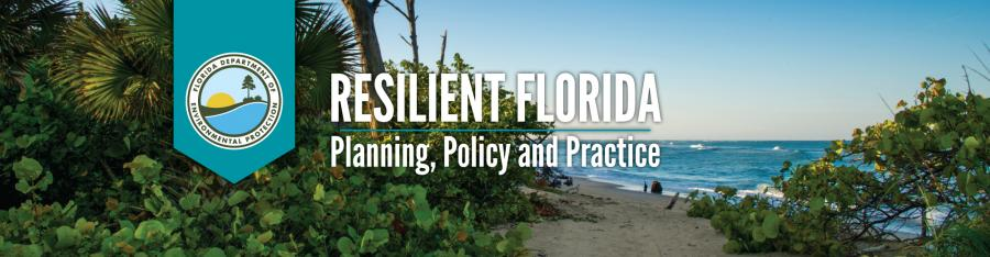 Resilient Florida: Planning, Policy and Practice