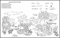 Kid Zone - Coral Reef Count and Color thumbnail