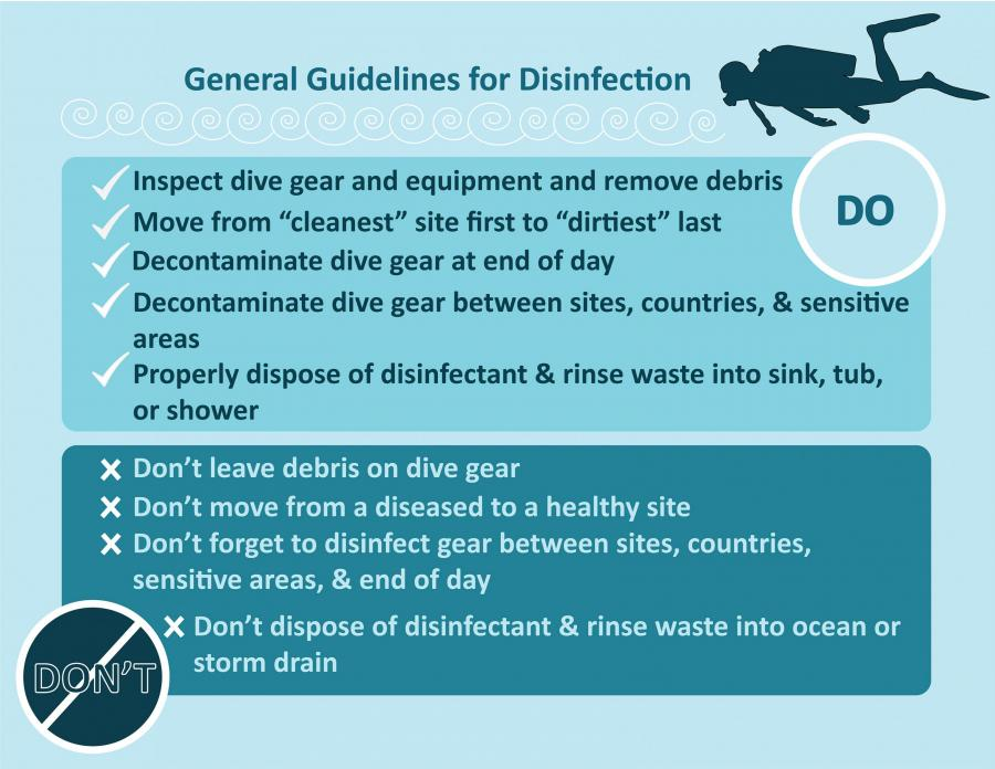 diver decontamination graphic – Created by Athena Burnett/NOAA